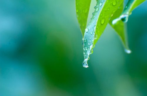 Voyage of a Droplet | Knots of Thoughts