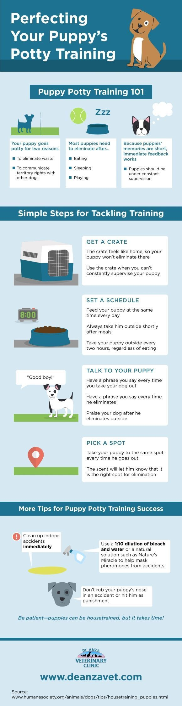 Do you know how to potty train your puppy? Start by setting a feeding schedule! Click over to this San Jose animal hospital infographic to get more tips that will help you potty train your furry friend.: