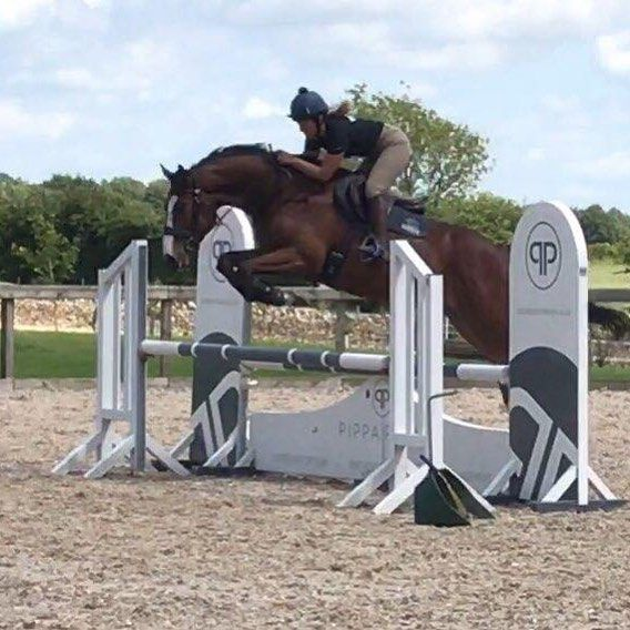 Olympic Rider Kitty King & Monbeg Tonic enjoying their schooling session at Rectory Farm Arena with our PPD show jump. Best of luck for your BYEH class!    #PippaPatonDesign #TheCotswolds #KittyKingEventing #RectoryFarmArena #ShowJumping #Equestrian #Horses