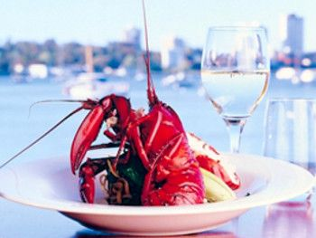 Matilda Bay in Perth - Book a Table Instantly @ Dimmi