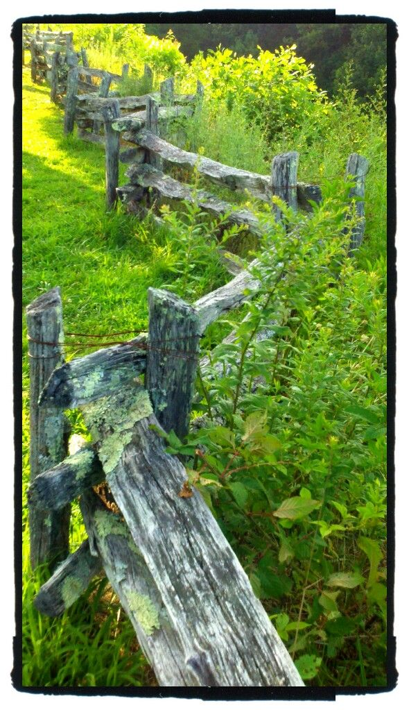 Just a cool old fence