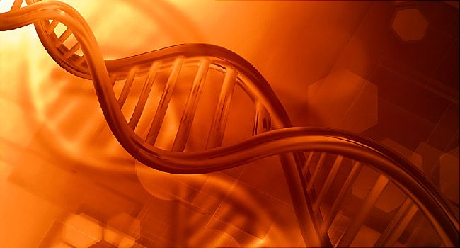 Personalized Medicine for Cancer | WebMD