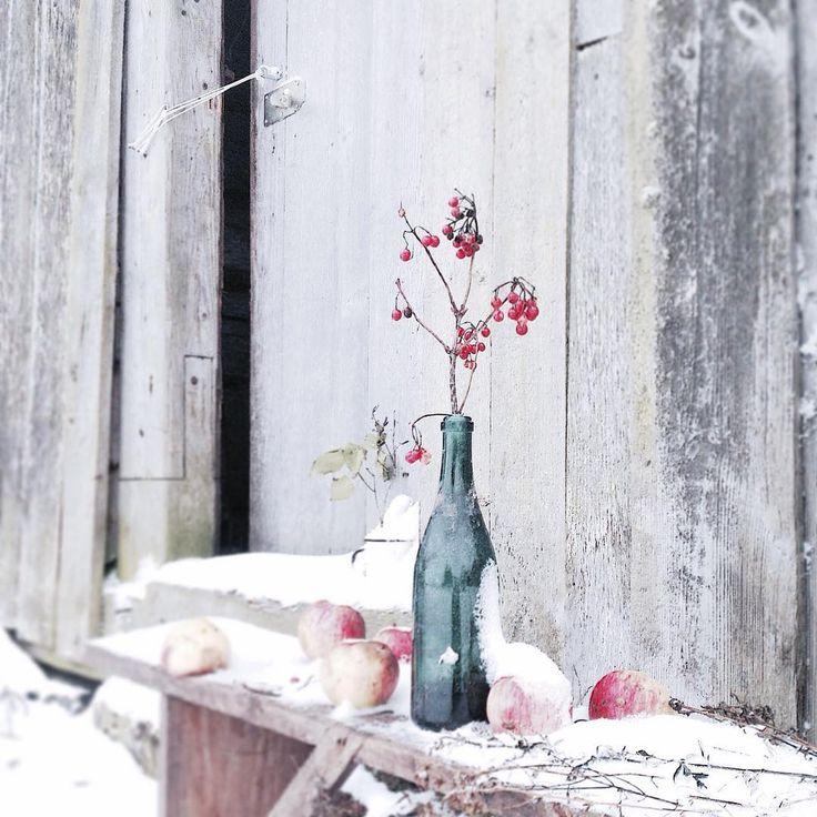 """317 Beğenme, 24 Yorum - Instagram'da @malicawool: """"За окном дождь... Неужели Новый год будет без снега,а как же Дед Мороз подарки доставит ,у него же…"""""""