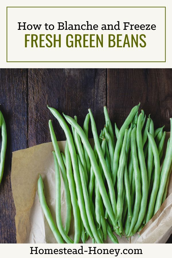 How To Blanche And Freeze Fresh Green Beans Homestead Honey Freeze Fresh Green Beans Green Beans Fresh Green Beans