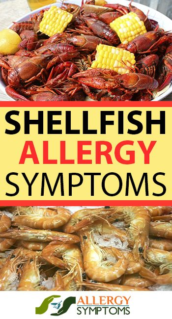 Shellfish Allergy Symptoms & Diagnosis  http://allergy-symptoms.org/shellfish-allergy/
