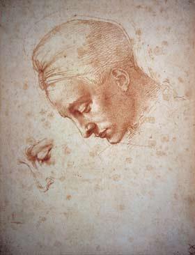 Michelangelo, Kopf der Leda, Museum Bonn