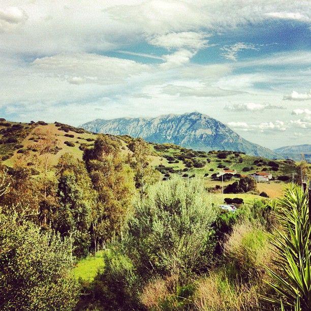 Loculi Area Sardegna
