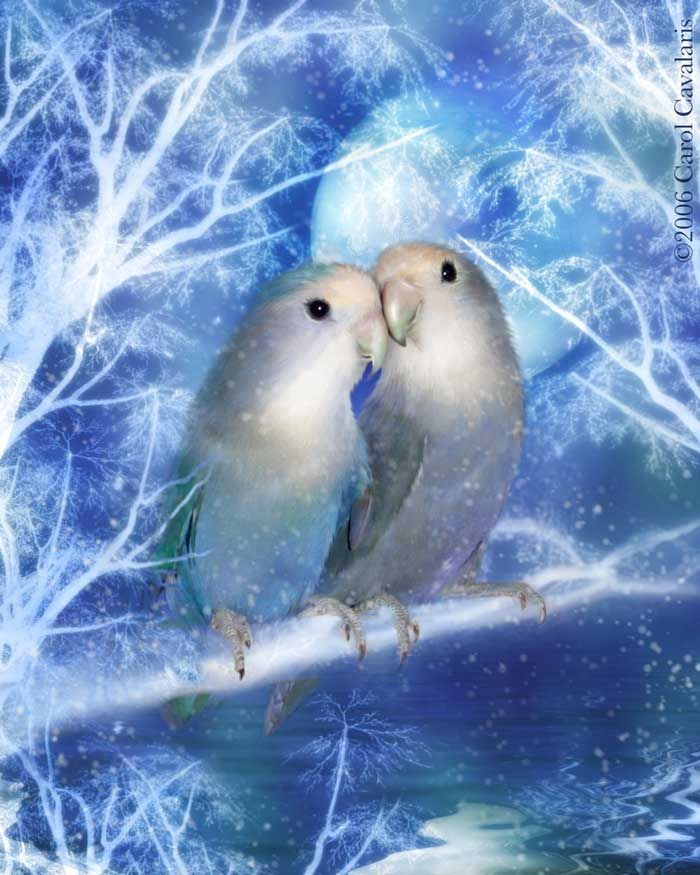 ... Series: Winter Love Two Love