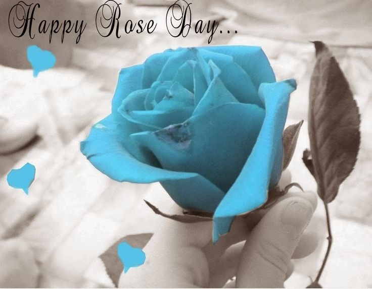 Happy Rose Day SMS Hindi