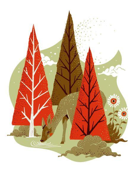 1000+ Ideas About Deer Illustration On Pinterest