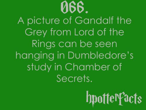 WOAH!!! I'm going to have to look for that!: Potter Stuff, Movies, Re Watches, Hpfact, Hp Facts, Harry Potter Facts, I'M, I Will, Facts 066