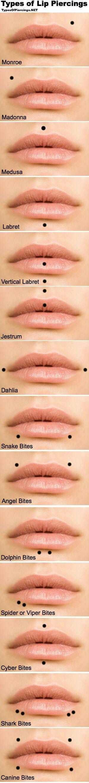 Lip piercing chart