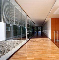 Escuela de Idiomas de Elche by Javier García-Solera Vera - narrow patios- Inspiration for University Campus in Middle East by SI Archictects