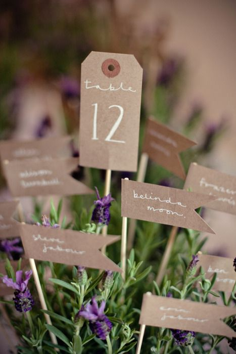 - plan de table - pot de fleurs ou herbes aromatiques - piques - kraft - drapeaux -