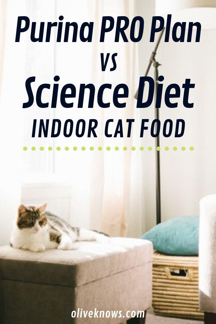 Purina Pro Plan Vs Science Diet Cat Food 2020 Edition Oliveknows Science Diet Cat Food Cat Food Reviews Diet Cat Food