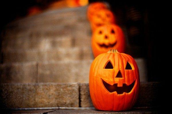 Warna Orange Labu Hallowen