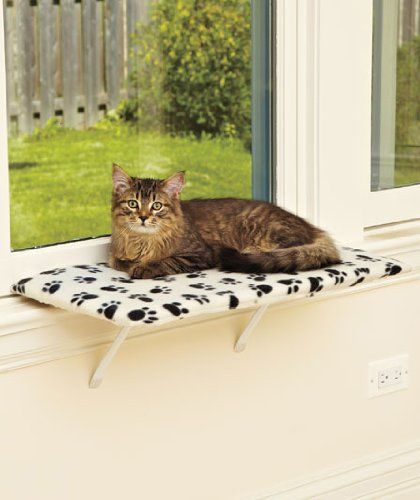 "Mr. Squeaker would sure love this! 24"" Fleece Lazy PET Kitty Cat Window Perch Seat Bed Bench PTA,http://www.amazon.com/dp/B0055UCK58/ref=cm_sw_r_pi_dp_gDo1sb12RH275YNY"