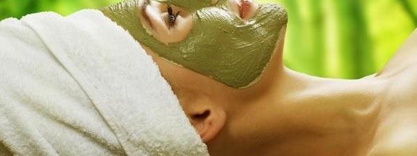 masques largile verte cheveux et visage - Masque Argile Cheveux Colors