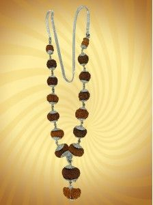 Siddha Mala: Special combination of different powerful rudraksha beads. Wearing that mala you will achieve great #success, #happiness, #name and #fame, #prosperity in #business. Your mental and #physical #strength will increase. Who #wears it can expect blessings of #Laxmi and #Saraswati. Wearer is considered the most #fortunate person. He can cure himself from malefic effect of #nine #planets.