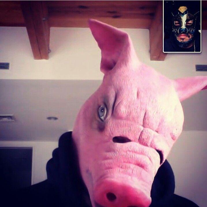 Pig mask   Norman's Instagram