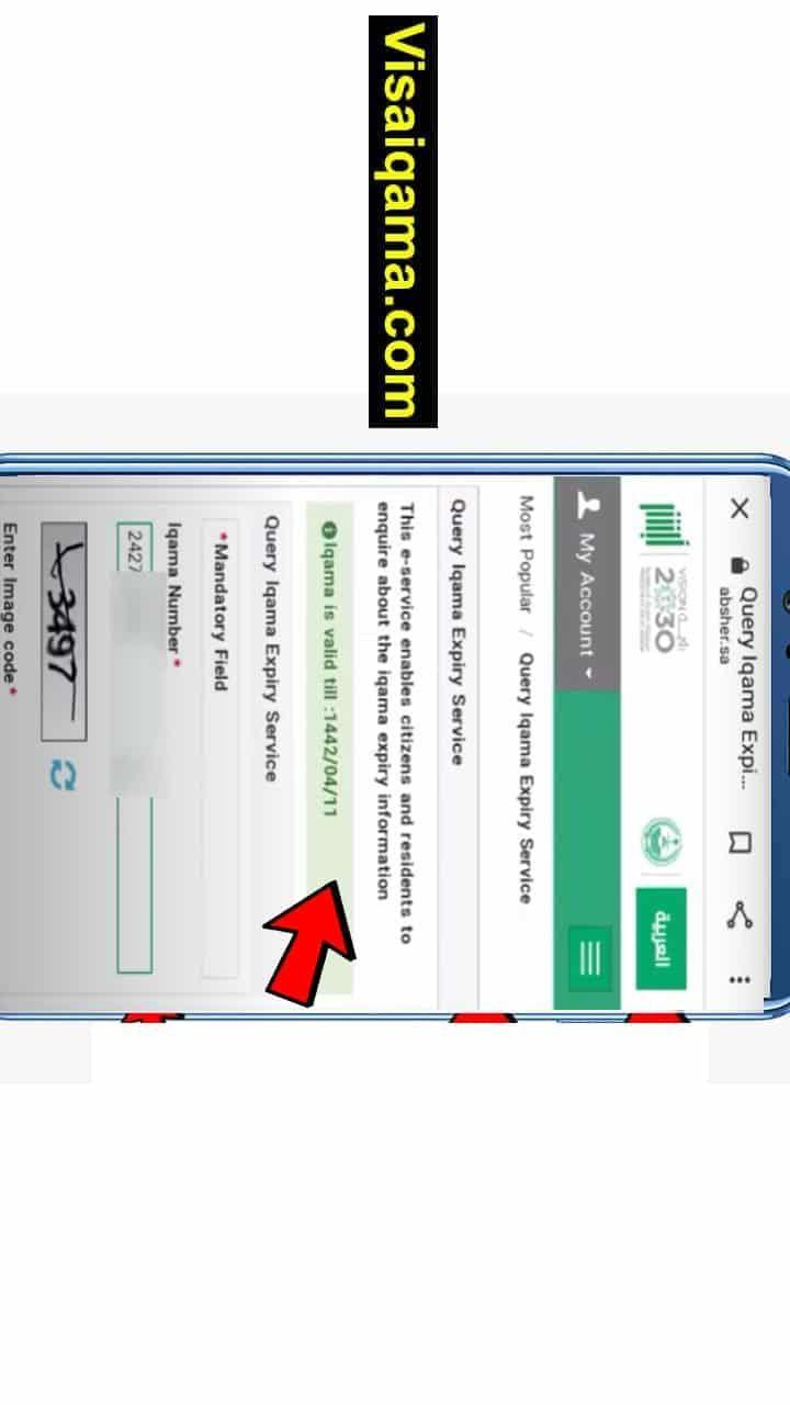 How To Check Iqama Status Online In Saudi Arabia Coding Status Bar Chart