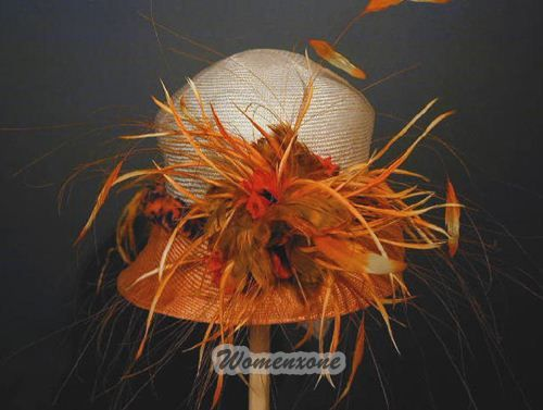 kentucky derby hats pictures Collection: Hats Pictures, Hats Facinators, Kentucky Derby Hats, Fashion Hats, Hats Hats, Photo, Feathery Hat