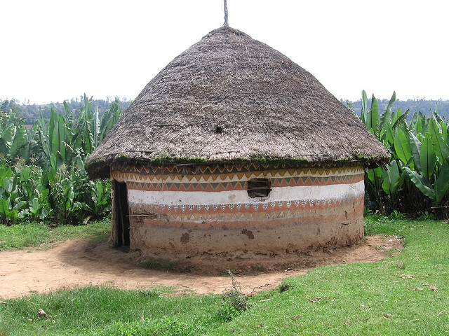 List of Synonyms and Antonyms of the Word ethiopian houses