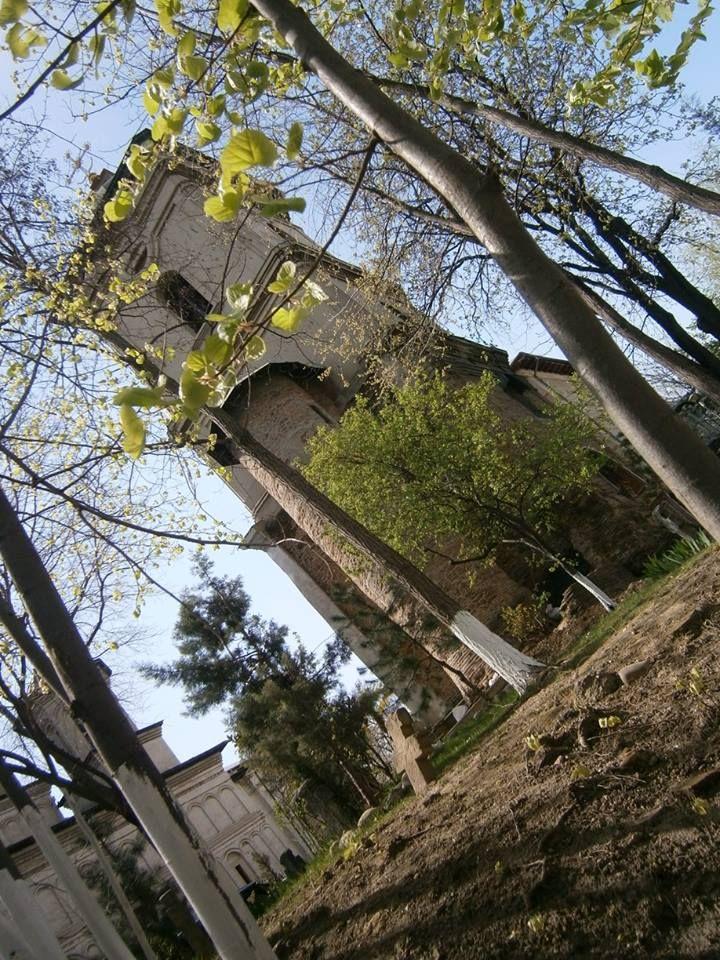 Primavara in curtea Manastirii radu Voda