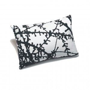 Larch Organic Cushion