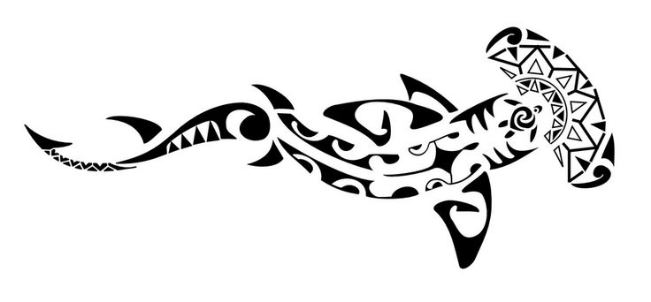 17 best images about hammerhead tattoos on pinterest