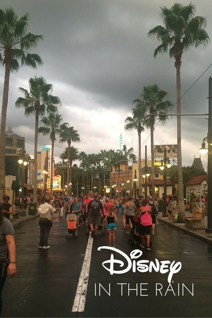 Disney World when its raining! Grab your poncho and have some fun! Learn how at www.daytripsanddaydreams.com