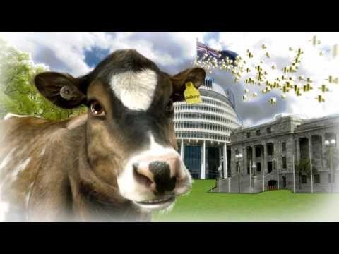 Rosie's World - New Zealand's dairy industry 'Cowbassador'