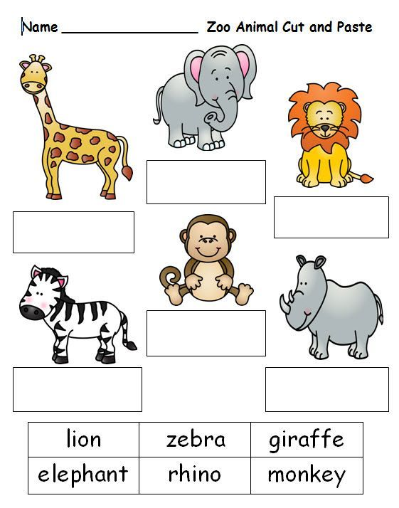 free cut and paste worksheet on zoo animal names see this and nota anak zoo activities. Black Bedroom Furniture Sets. Home Design Ideas