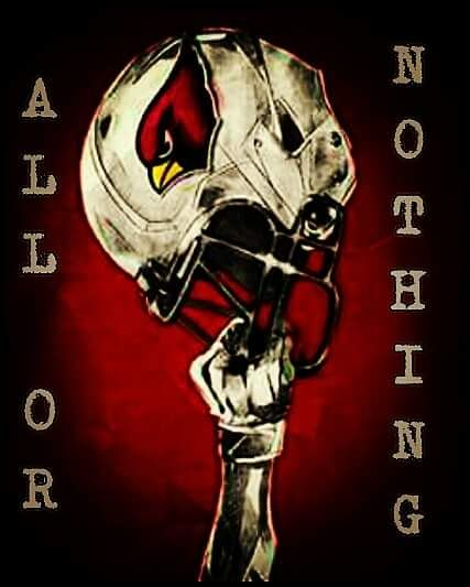Arizona Cardinals 'All or Nothing' 2016 season #BirdGang #AZLadyBirds
