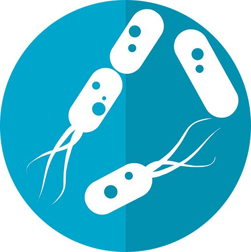 Onderzoekers richten zich steeds vaker op de manier waarop de darmbacteriën de mentale gezondheid beïnvloeden. Humeur, stemming, eetgedrag; de micro-organismen hebben er invloed op. Journal of Psyc…