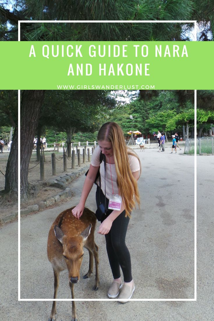 A quick guide to Nara and Hakone, Japan! https://girlswanderlust.com/2015/10/22/a-quick-guide-to-nara-and-hakone-japan/