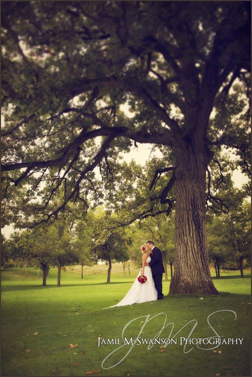 Elegant Wedding Portait of a Bride and Groom under an old oak tree at South Hills Country Club in Fond du Lac WI