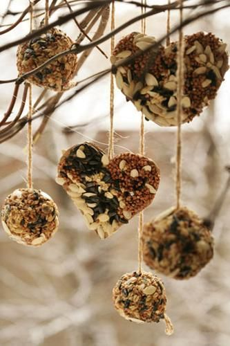 Simple design ideas for creative and recycled crafts help turn useless items and food packaging into wonderful bird feeders