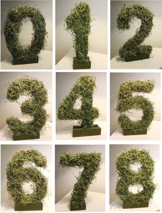 Party Decorations: Moss Table Numbers