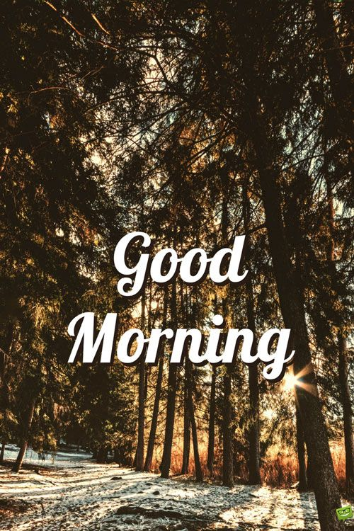 Fresh Inspirational Good Morning Quotes For The Day Get On The Right Track Part 9 Good Morning Winter Good Morning Quotes Good Morning Nature
