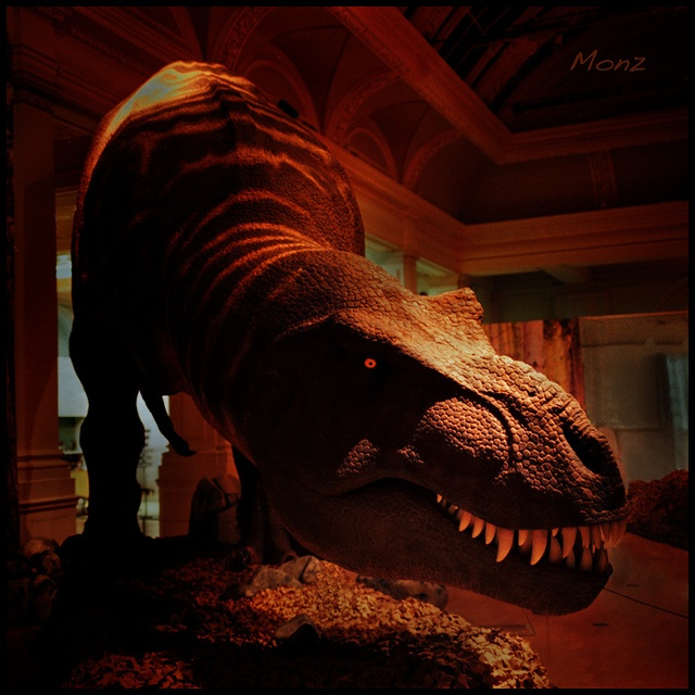 T.Rex - the Killer Question exhibition.