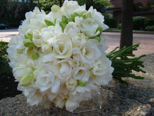 Freesia Bouquet Wedding Bouquets Pinterest