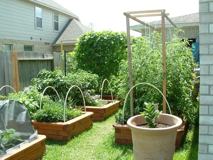 Houston Back Yard Gardening Pinterest Gardens