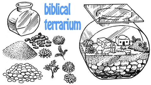 Making Bible Story Terrariums