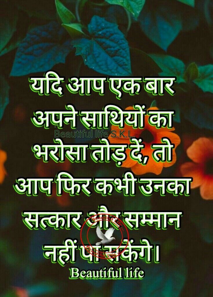 Sorthiya Reshma Life S Dil Se Hindi Quotes Frogs T