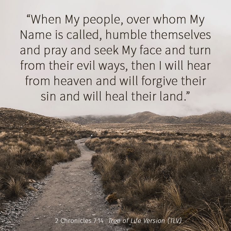 """""""When My people, over whom My Name is called, humble themselves and pray and seek My face..."""" 2 Chronicles 7:14 TLV #tlvbible #bible"""