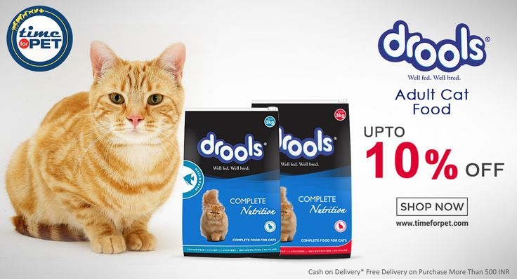 Complete nutritious food products for your 🐱#cats at attractive deals. Delivery within one Business Day http://buff.ly/2qipj2z #timeforept