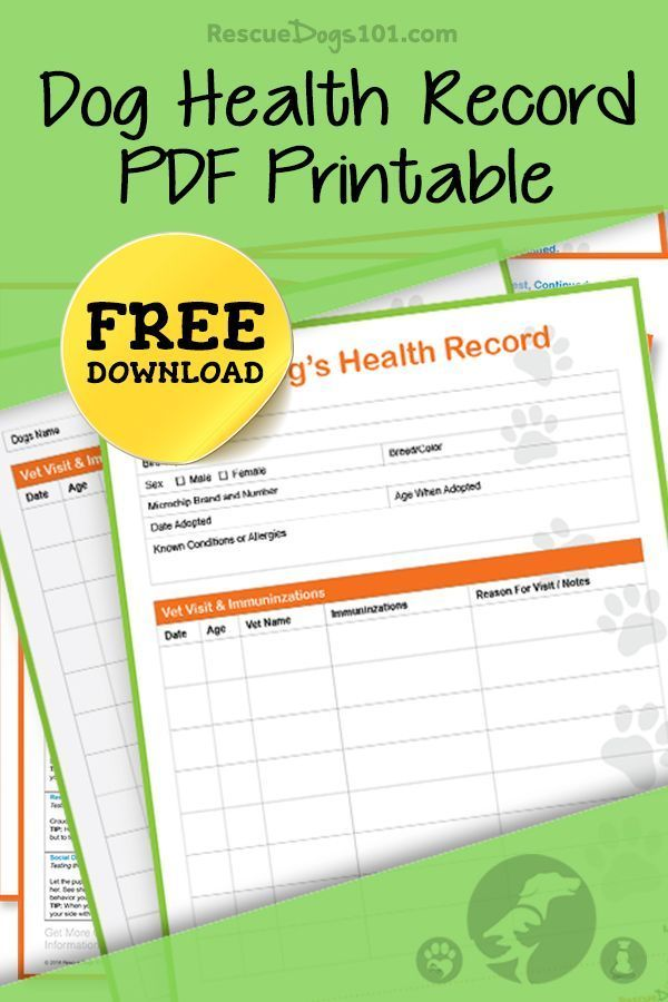 Keep Track Of Your Dogs Health Record With Our Free Pdf Printable We Have An Entire Resource Library To Make Keep Dog Health Pet Health Record Dog Health Tips