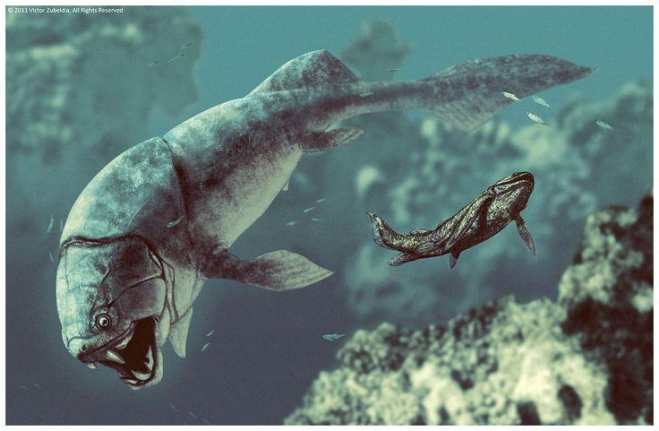 Dunkleosteus (pez placodermo del Devónico, 380MA) (Victor Zubeldia)