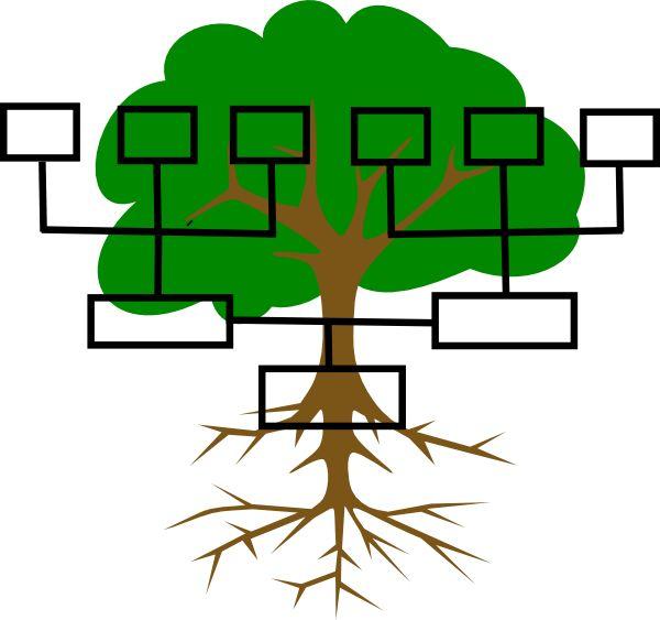 where can i buy a family tree chart